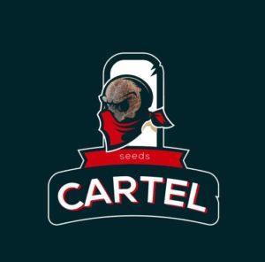 Cartel Seeds - семена конопли картеля